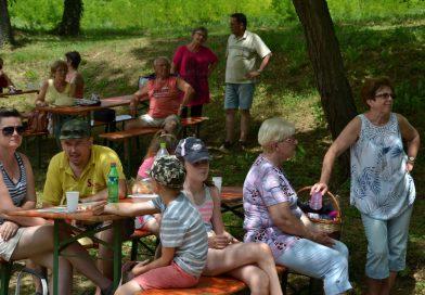 Családi, baráti piknik.