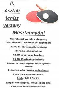 Ping-pong verseny @ Mesztegnyő