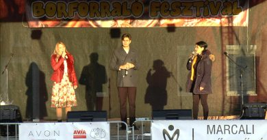 Két Szoknya Egy Nadrág Társulat fellépése a X. Borforraló Fesztiválon (részlet) – VIDEÓ