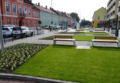 Virágokat ültetnek a Rákóczi utcában